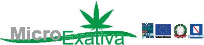 Progetto Microexativa Logo